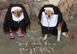 funny nuns