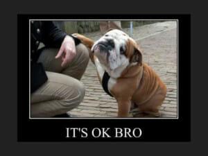 It's ok bro